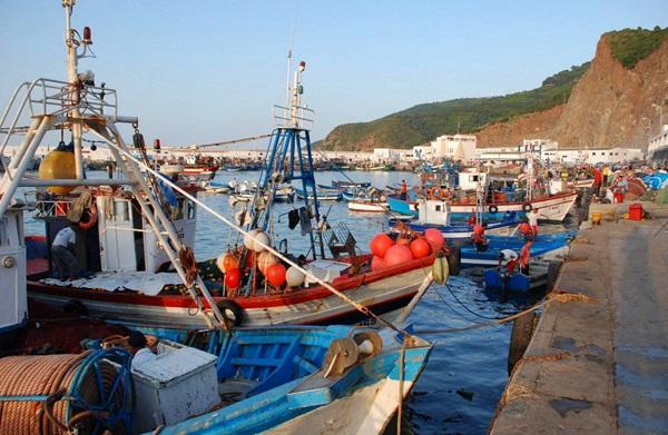 قطاع الصيد البحري بالحسيمة
