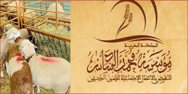 مؤسسة محمد السادس للنهوض بالأعمال الاجتماعية للقيمين الدينيين