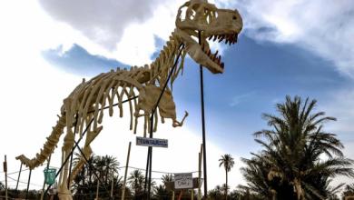 صورة اكتشاف نوع جديد من الديناصورات في المغرب..