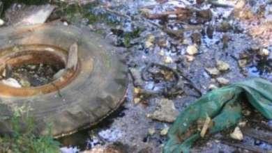 تلوث التربة وانتشار النفايات
