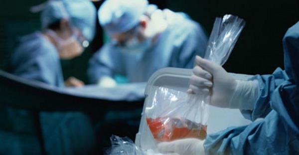 التبرع وزرع الأعضاء